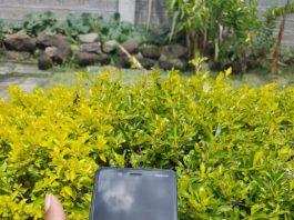 Kenyan-Collective-Nokia-8-Review