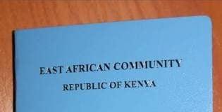 Kenyan Immigration department | Kenyan Collective